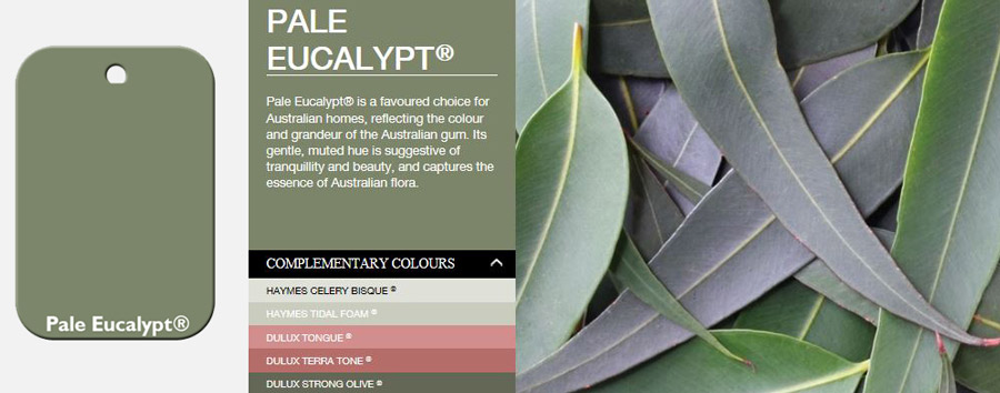 pale-eucalypt-swatch-description